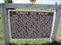 Image for Turkey Red Wheat - Walton, Kansas