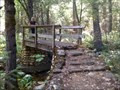 Image for Flume Trail Footbridge (1 of 2) - Castle Crags State Park