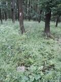 Image for TB 0609-10 Moravanský les