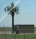 Image for I-8 Palm Tree Cell 2 - El Centro, CA