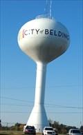 Image for City of Belding water Tower Belding Mi.
