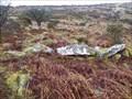 Image for Hut Circle near Sharp Tor, Dartmoor UK