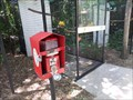 Image for Feeding the Sun Conures  -  Miami, FL