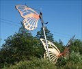 Image for Butterflies - Cayuga Nature Center - Ithaca, NY
