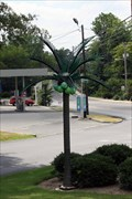 Image for Griffin Medical Palm Tree - Dalton, GA