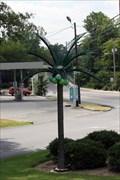 Image for Griffin Medical Palm Tree - Dalton, GA