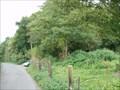 Image for Hail Mary & Falconer Wood - Sheffield, UK