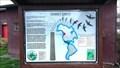 Image for Chimney Swifts - Roseburg, OR