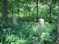 Image for Daniels Cemetery - Weldon Springs, Missouri