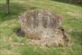 Image for Boddington's Census Stone, St.John the Baptist's Churchyard, Upper Boddington, Northants.