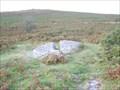 Image for Coffin Stone. Near Dartmeet, Dartmoor