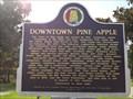 Image for Downtown Pine Apple, Alabama