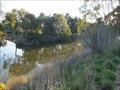 Image for CONFLUENCE - Moorabool River - Barwon River