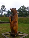 Image for Carved Bear - Signal Mountain TN.