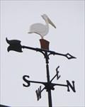 Image for Pelco Pelican Weather Vane - Edmond, OK