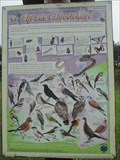 Image for Flora and Fauna Information Sign (5. Ziji zde i zivocichove) - Brno, Czech Republic