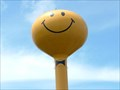 Image for The Happiest Roadside Attraction Around