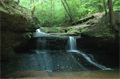 Image for Creationg Falls - Red River Gorge Kentucky