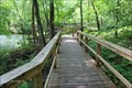 Image for Acton Arboretum Boardwalk - Acton, MA