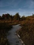 Image for Boardwalk - Cranesville Subarctic Swamp