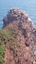 Image for Lummenfelsen, helgoland - Germany