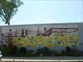 Image for Flowers & Industrial Skyline - Easthampton, MA