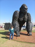Image for From Cars to King Kong – Grand Prairie, TX