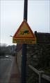 Image for Amphibian crossing - Epernon, France