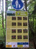 Image for Nordic Walking Trail - Kurpark - Fischen, Germany, BY