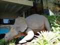 Image for Triceratops - South Brisbane - Queensland - Australia