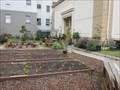Image for Tenderloin People's Garden - San Francisco, CA