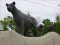 Image for Lioness & Cubs - Toledo Zoo - Ohio.