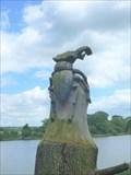 Image for Stag Beetle - Trentham Gardens - Trentham, Stoke-on-Trent, Staffordshire, UK.