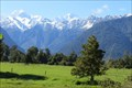 Image for Westland and Mount Cook National Parks - West Coast, New Zealand