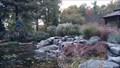 Image for Beechwood Cemetery Botanical Gardens waterfall - Vanier, Ontario