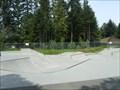 Image for Pioneer Skate Park - Nanaimo, BC