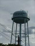 Image for Buckhead Ridge, Florida, water tower