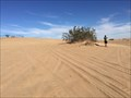 Image for Imperial Sand Dunes - Felicity, CA