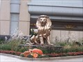 Image for MGM Grand Lion - Detroit, Michigan