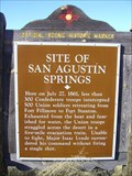 Image for Site of San Agustín Springs