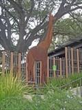 Image for Giraffe - San Antonio, TX