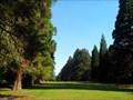 Image for Allée des Sequoias géants, Mennecy, Essonne, France