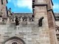 Image for Gargouilles de la Cathédrale Notre-Dame - Rodez, France