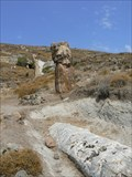 Image for Lesvos Petrified Forest Geopark - Greece