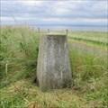 Image for O.S. Triangulation Pillar - Coalyard Hill, St Monans, Fife.