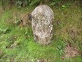 Image for Parish Boundary Stone - Whitchurch/Sampford Spiney