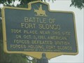 Image for Battle of Fort Slongo