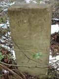 Image for Eliza Ann Beach Gravesite