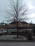 Image for Rzeszów-Baum - Bielefeld, Germany