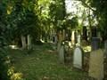 Image for židovský hrbitov / the Jewish cemetery, Kovanice,  Czech republic